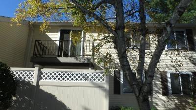 Natick Condo/Townhouse Under Agreement: 55 Village Brook Ln #6