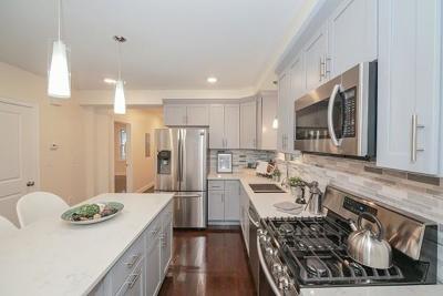 Somerville Condo/Townhouse For Sale: 30 Fountain Avenue #1