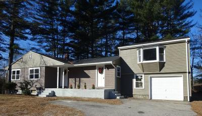 Douglas Single Family Home For Sale: 154 Main St