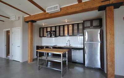Boston, Cambridge Rental New: 90 Wareham Street #514