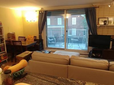 Boston, Cambridge Rental Price Changed: 4 Trowbridge Pl #5C
