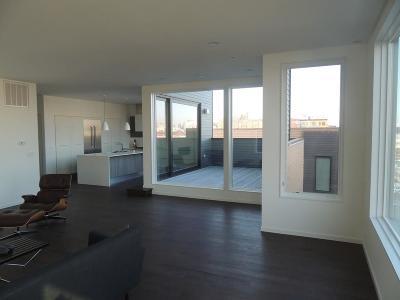 Boston, Cambridge Rental New: 509 East First #7