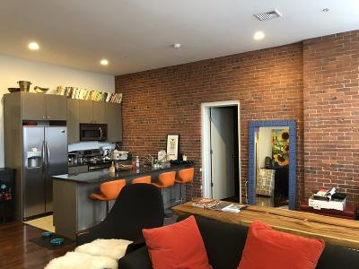 Boston, Cambridge Rental New: 460 Harrison Ave #204