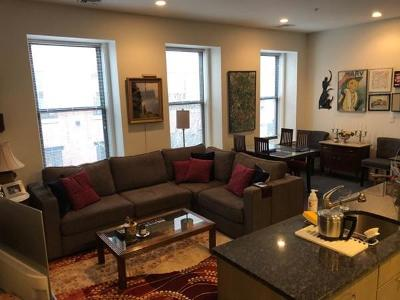 Boston, Cambridge Rental New: 460 Harrison Ave #407
