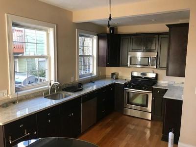 Boston, Cambridge Rental New: 519 E 5th