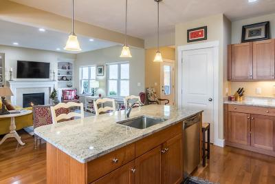 Plymouth Condo/Townhouse For Sale: 14 Red Canoe #14