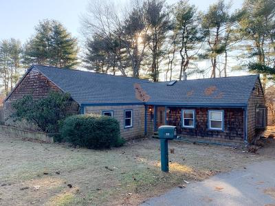 MA-Norfolk County Single Family Home For Sale: 233 Plain St