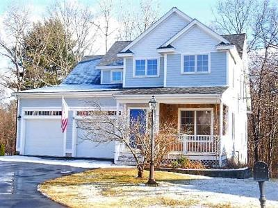 Andover Single Family Home For Sale: 13 Greenmeadow Ln