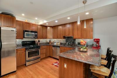 Boston Condo/Townhouse For Sale: 120 W 7th St #204