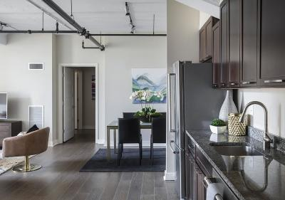 Boston Condo/Townhouse New: 166 Terrace St #404