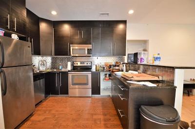 Brookline Rental New: 94 Pleasant Street #4
