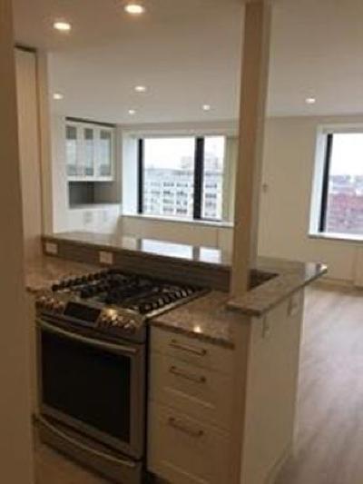 Boston Rental New: 85 East India Rowe #15H