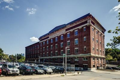 Boston Condo/Townhouse New: 166 Terrace St #401
