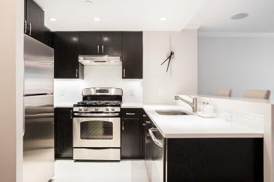 Boston Rental New: 151 Tremont Street #8B