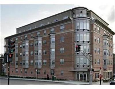 Boston Rental New: 120 Mountfort Street #403
