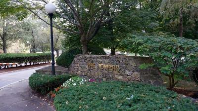 Newton Condo/Townhouse New: 250 Hammond Pond Parkway #103S