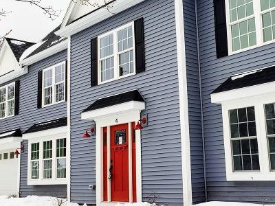Natick Single Family Home For Sale: 4 Terrane Ave