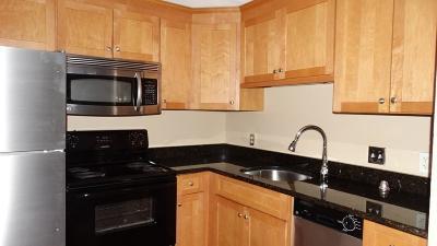 Wrentham Rental For Rent: 131 Creek Street #3