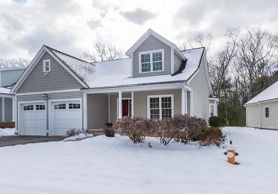 North Andover Single Family Home For Sale: 79 Cortland Drive