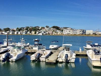 Hingham, Hull, Scituate, Norwell, Hanover, Marshfield, Pembroke, Duxbury, Kingston, Plympton Condo/Townhouse For Sale: 7 Bay Street (The Estuary) #TH-8