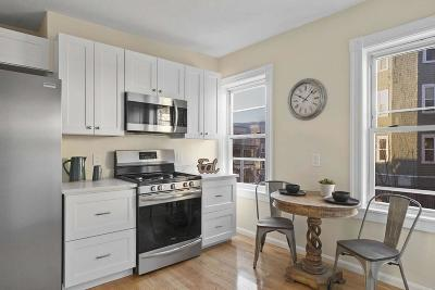 Condo/Townhouse For Sale: 9 Rowell Street #3