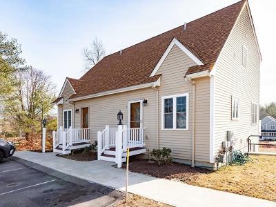 Hanson Condo/Townhouse For Sale: 1449 Main St #2