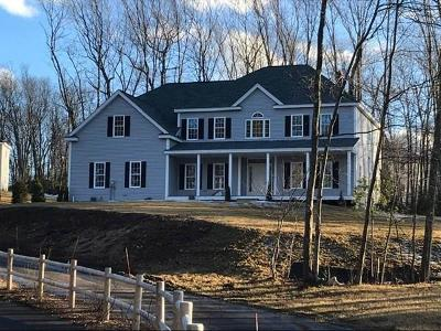 Holliston Single Family Home For Sale: 53 Old Cart Path