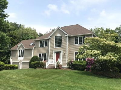 Andover Single Family Home For Sale: 1 Meadow View Ln