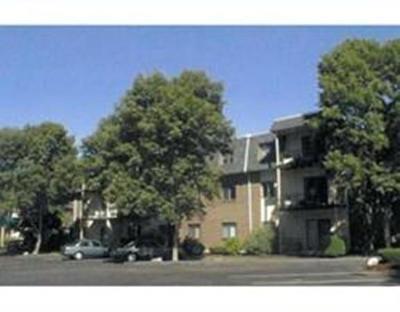 Randolph Condo/Townhouse For Sale: 232 Canton St #209