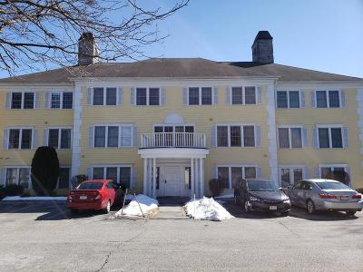 Methuen Condo/Townhouse For Sale: 1 Riverview Blvd #3-210