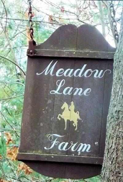 Middleboro Single Family Home For Sale: 173 Chestnut St