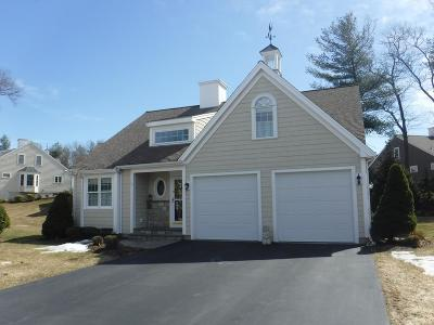 Weymouth Single Family Home Under Agreement: 19 Birdie Ln #19