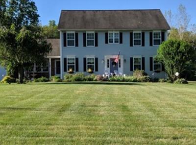 Belchertown Single Family Home For Sale: 58 Cheryl Cir