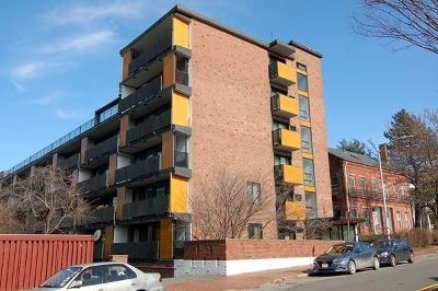 Cambridge Rental For Rent: 345 Harvard Street #5A