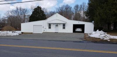 Swansea Single Family Home For Sale: 161-A Locust St