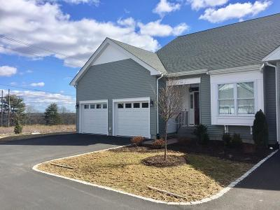 Plainville Condo/Townhouse For Sale: 19 Terry Lane #4