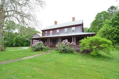Wrentham Single Family Home For Sale: 234 South Street