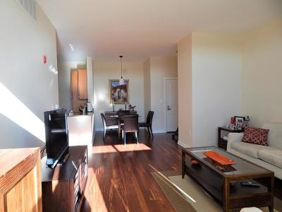 Watertown Condo/Townhouse For Sale: 3 Repton Circle #3404
