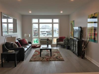 Quincy Condo/Townhouse New: 2 Cliveden Street #404E