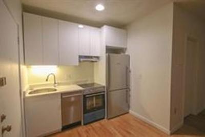Boston Rental New: 701-703 Mass Avenue #10