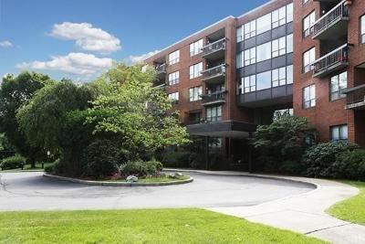 Newton Condo/Townhouse For Sale: 210 Nahanton St #217