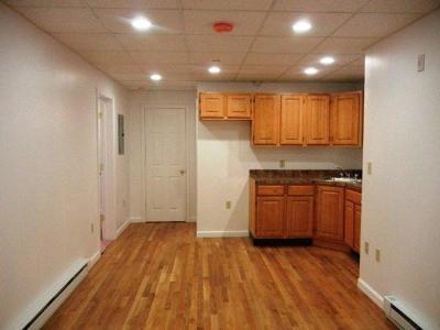 Boston Rental New: 77 Park Drive #B