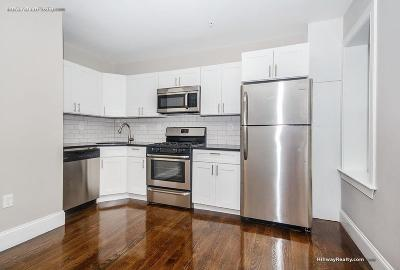 Boston Rental New: 147 Paris St #3