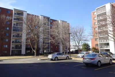 Medford Condo/Townhouse New: 28 Ninth Street #207