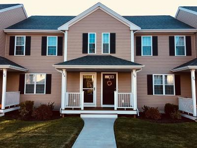 Plymouth Single Family Home New: 101 Cherry St #25
