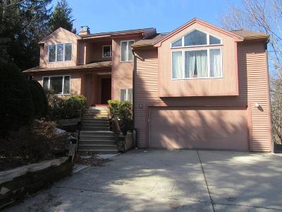 Worcester Single Family Home For Sale: 3 Spring Valley Rd