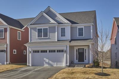 Framingham Single Family Home For Sale: 202 Meadow Street Ext