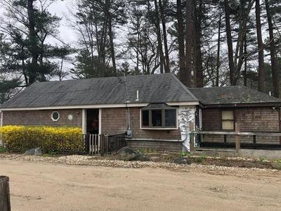 Hanson Single Family Home For Sale: 254 Lakeside Rd