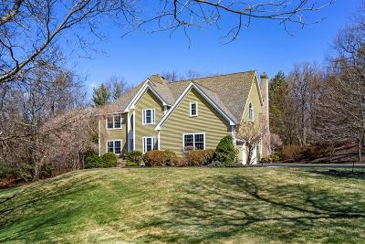 Hopkinton Single Family Home For Sale: 22 Tammer Ln