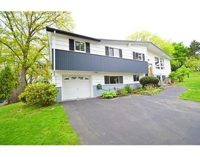 Needham Single Family Home For Sale: 46 Daley St
